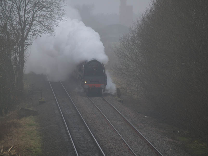 71000 Duke of
